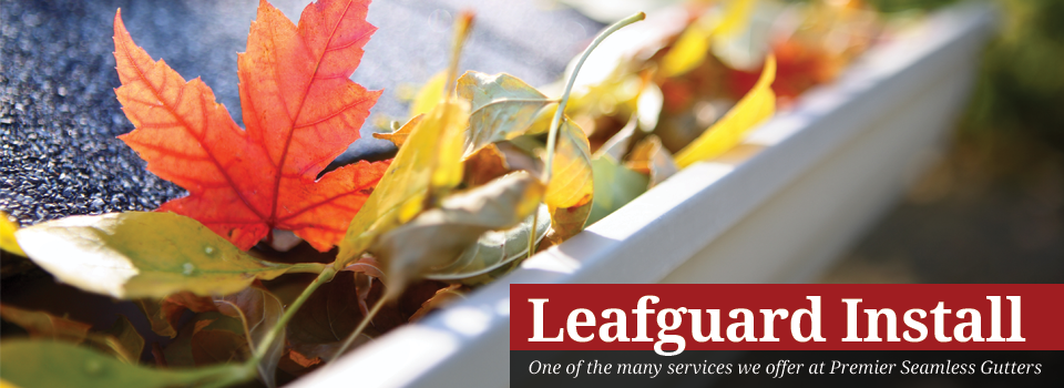 Leaf Guard Installation